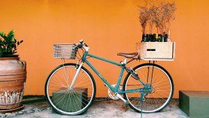 Fernando Leon Consultoremociones en el turismo del vino